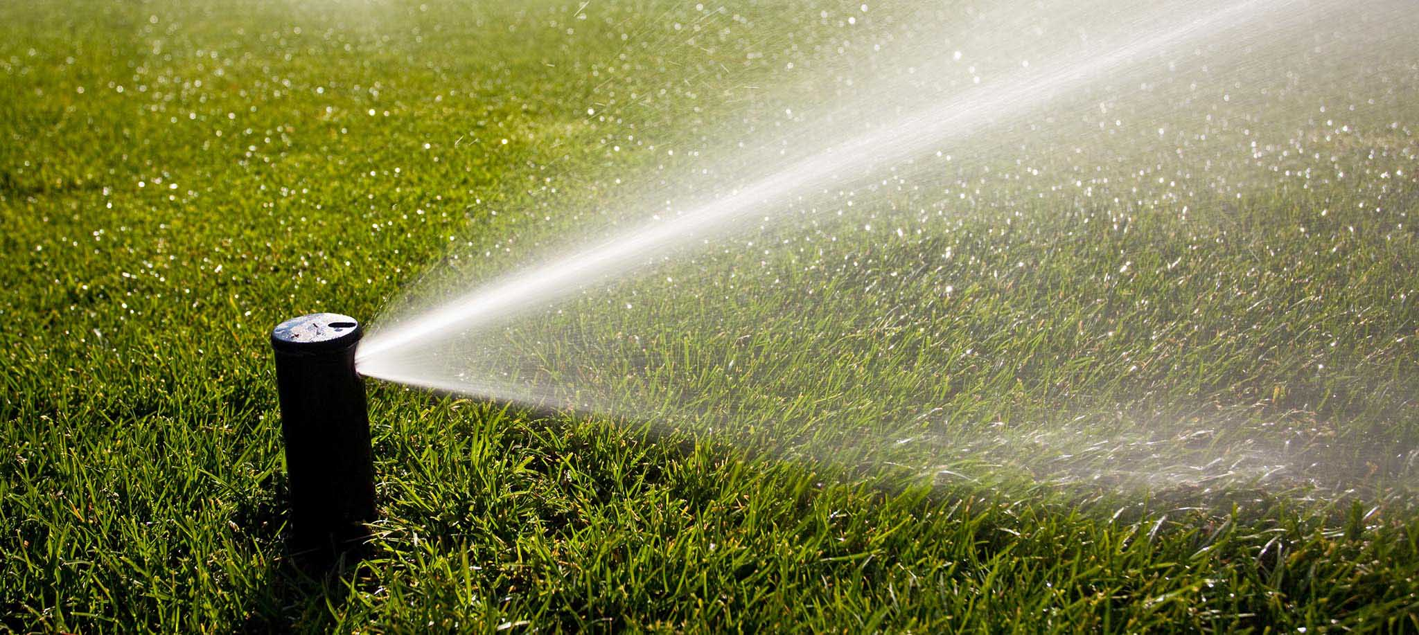 Arrosage automatique stade eau de pluie